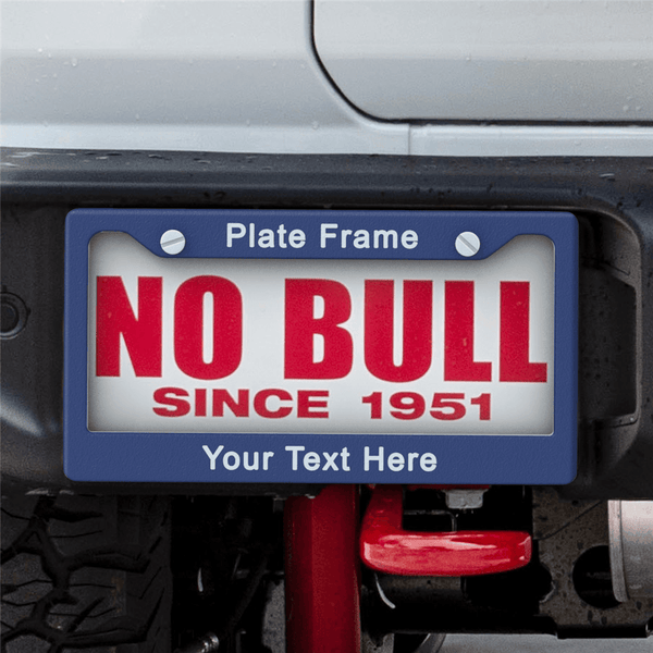 SET OF 2 - Custom Your Own Text Licence Plate Frames