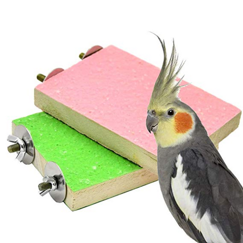 Pack Colorful Bird Perch Stand Platform Natural Wood Playground Paw Grinding