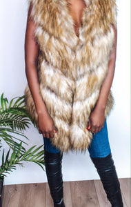 The Rich Bish Fur Vest