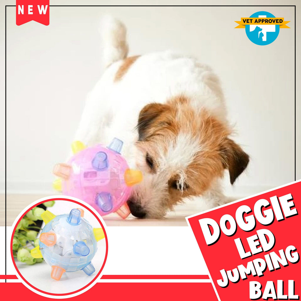 Doggie LED Jumping Ball