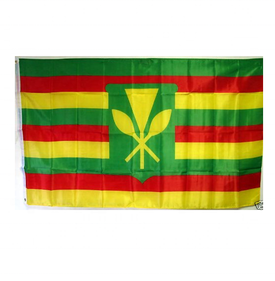 Hawaii Flag 3ft by 5 ft Polyester