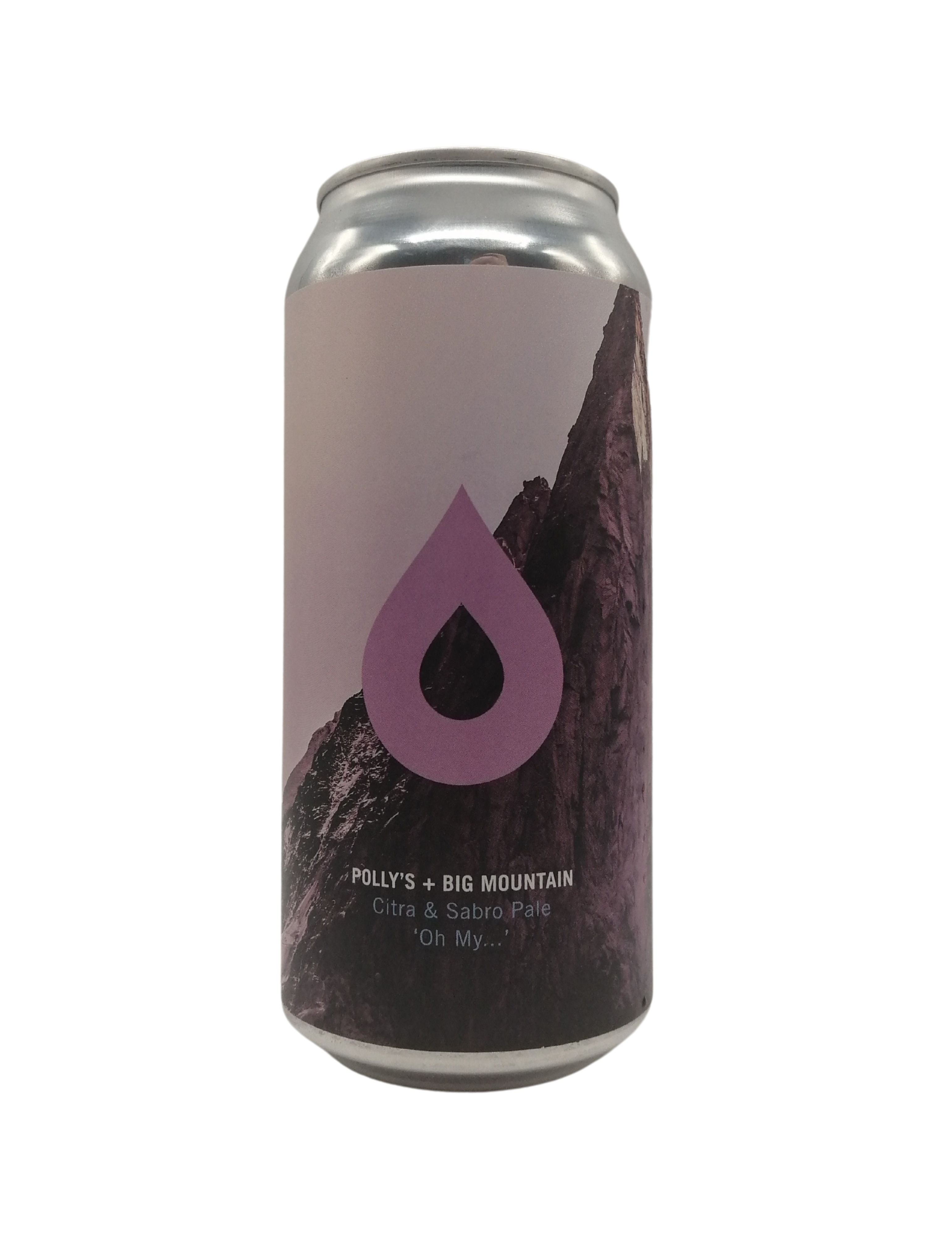 Polly's & Big Mountain Collab - Oh My... - Pale - 5.8% (4.04 UT)