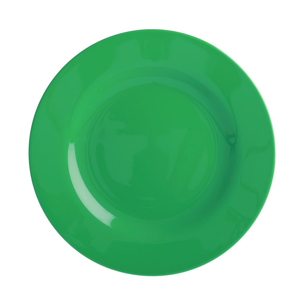 Melamine Lunch Plate | Forest Green - Rice By Rice