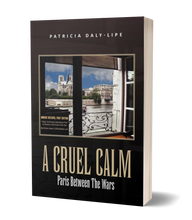 Load image into Gallery viewer, A Cruel Calm front cover 3D paperback