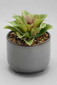 Artificial Plant in Ceramic Pot
