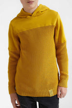 Load image into Gallery viewer, Mustard Hooded Pullover