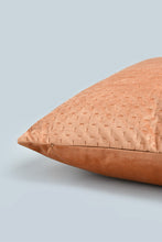 Load image into Gallery viewer, Rust Pin Sonic Velvet Cushion