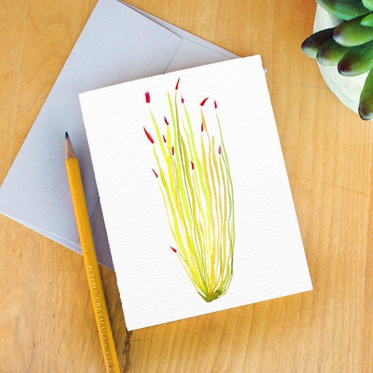 """Ocotillo Sun"" Greeting Card"