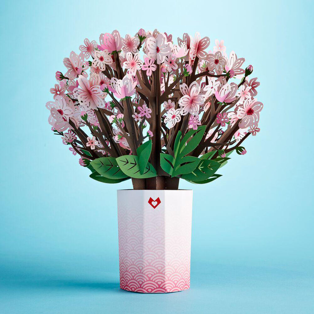 3D Laser Gifts Cherry Blossom Bouquet