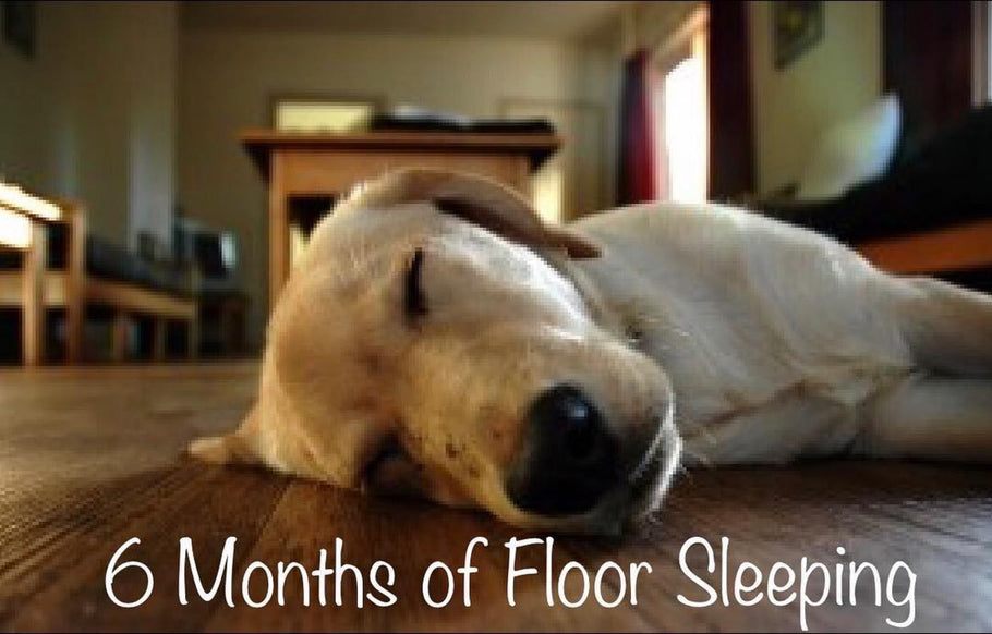 6 Months of Sleeping on the Floor