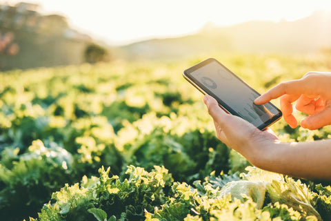4 Ways Farmers Can Use Modern Technology To Cut Costs