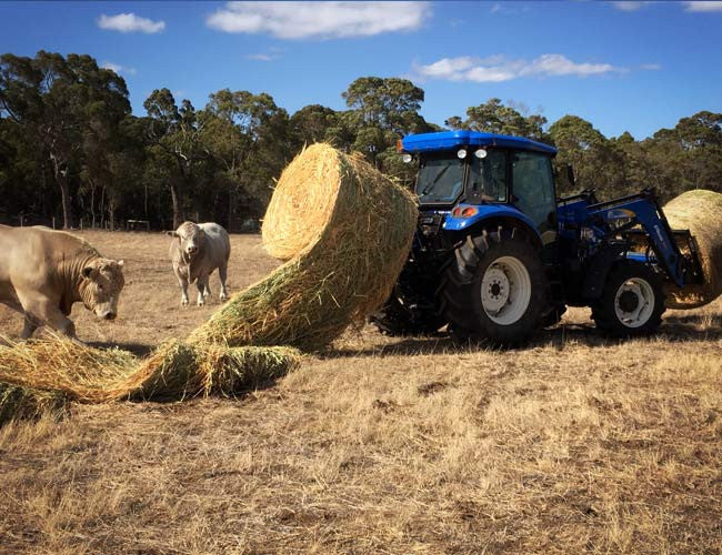 A fast new way to feed livestock - HaySpin Bale Spinner