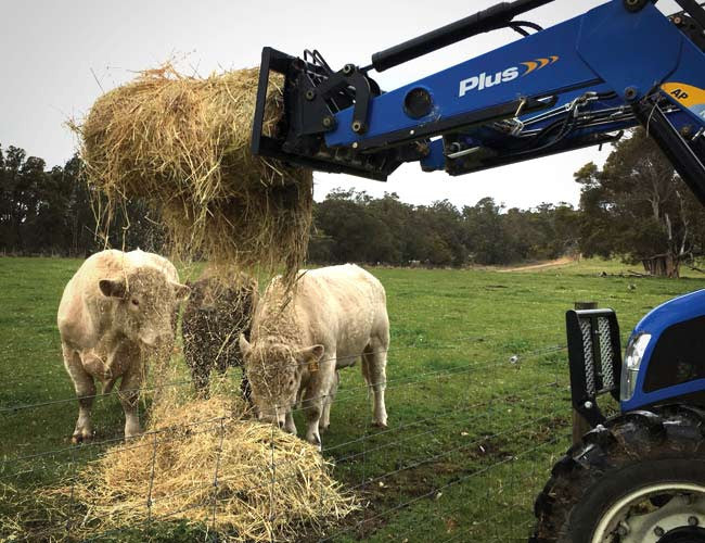 Distribute a single bale over multiple areas