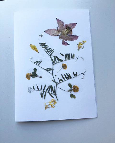 Pressed Flower Card Columbine Set
