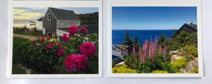 Note Cards 6 pack -Monhegan Gardens 2