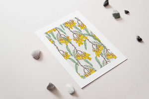 Branches of Kowhai - A4 Unframed Art Print