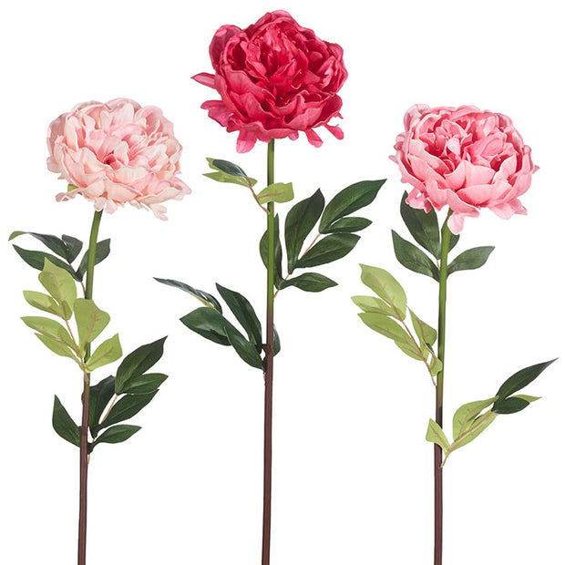 Real Touch Peony Stem - Assorted