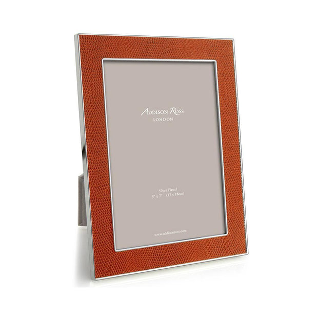 Orange Snake & Silver (5x7) Picture Frame