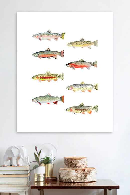 Trout Wall Art 10x14