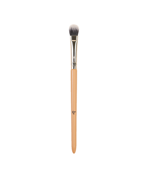 Addoony Individual Paint Eye Brushes