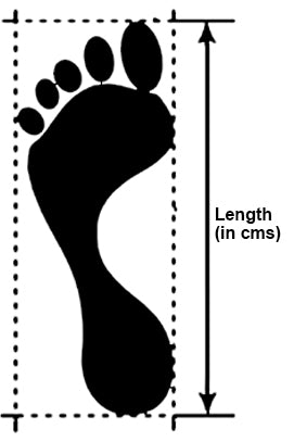 NICHE size guide for shoes