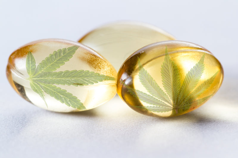 4 Benefits of Adding Fusion CBD Vitamins to Your Daily Routine