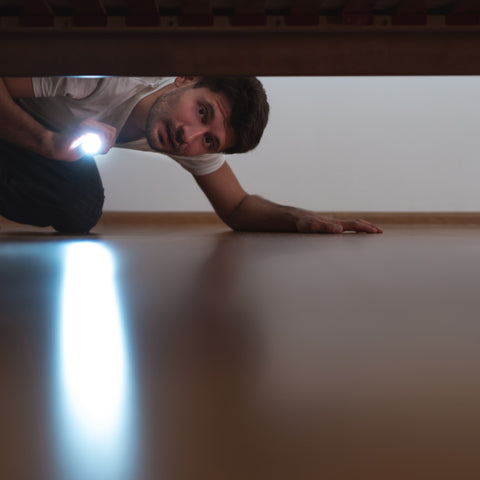 man looking under bed with flash light