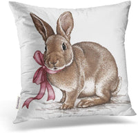 Emvency Square 16x16 Inches Decorative Pillowcases Easter Rabbit Bunny Engrave Vintage Graphic Cotton Polyester Decor Throw Pillow Cover with Hidden Zipper for Bedroom Sofa