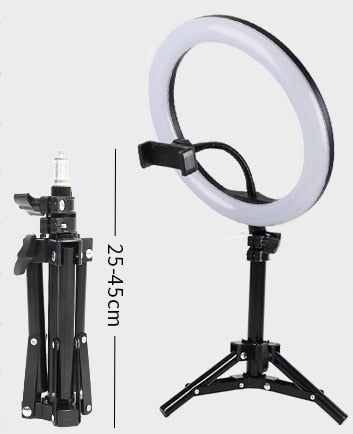 TIktok 6 Inch Light Price
