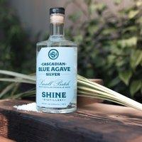 Cascadian Blue Agave - @ Your Door