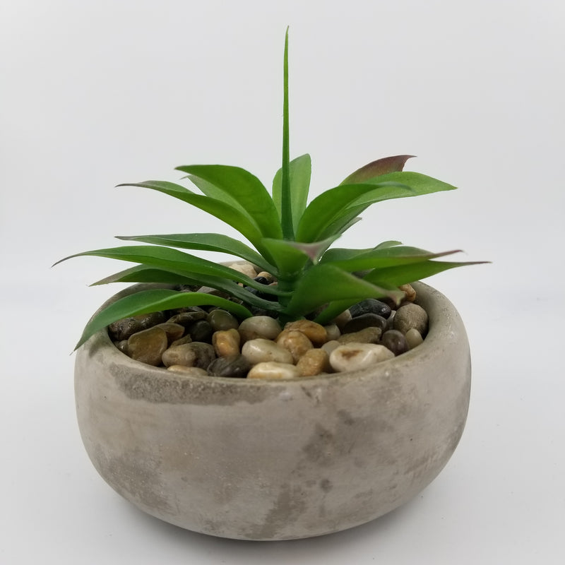 ARTIFICIAL SUCCULENT IN LOW ROUND CEMENT POT