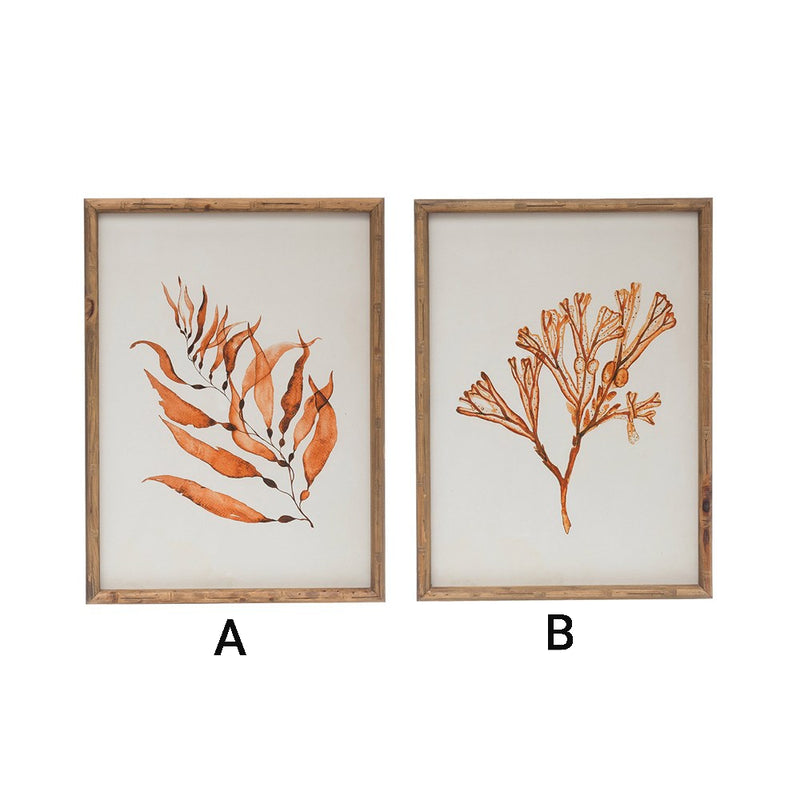 WOOD FRAMED BOTANICAL IMAGE