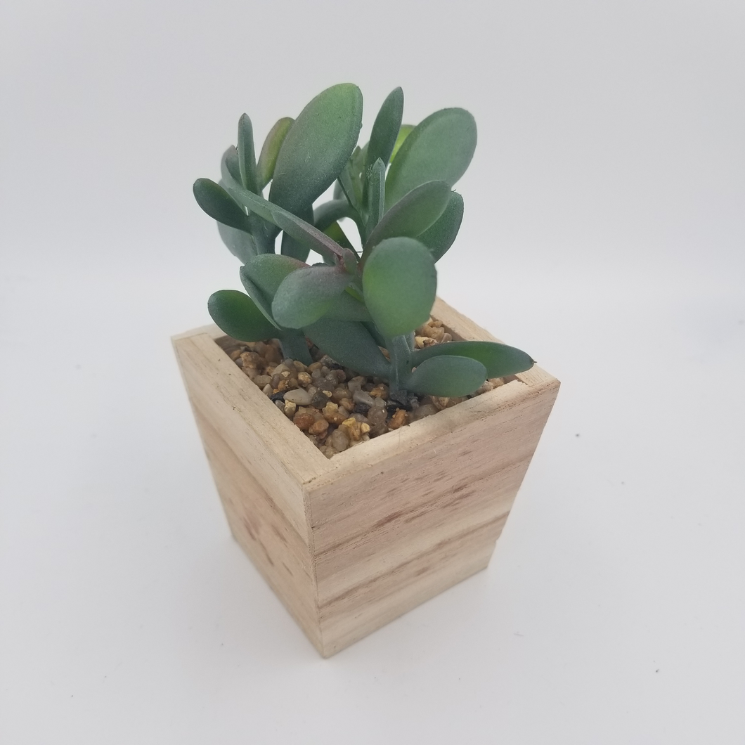 ARTIFICIAL POTTED SUCCULENT IN WOODEN BASE