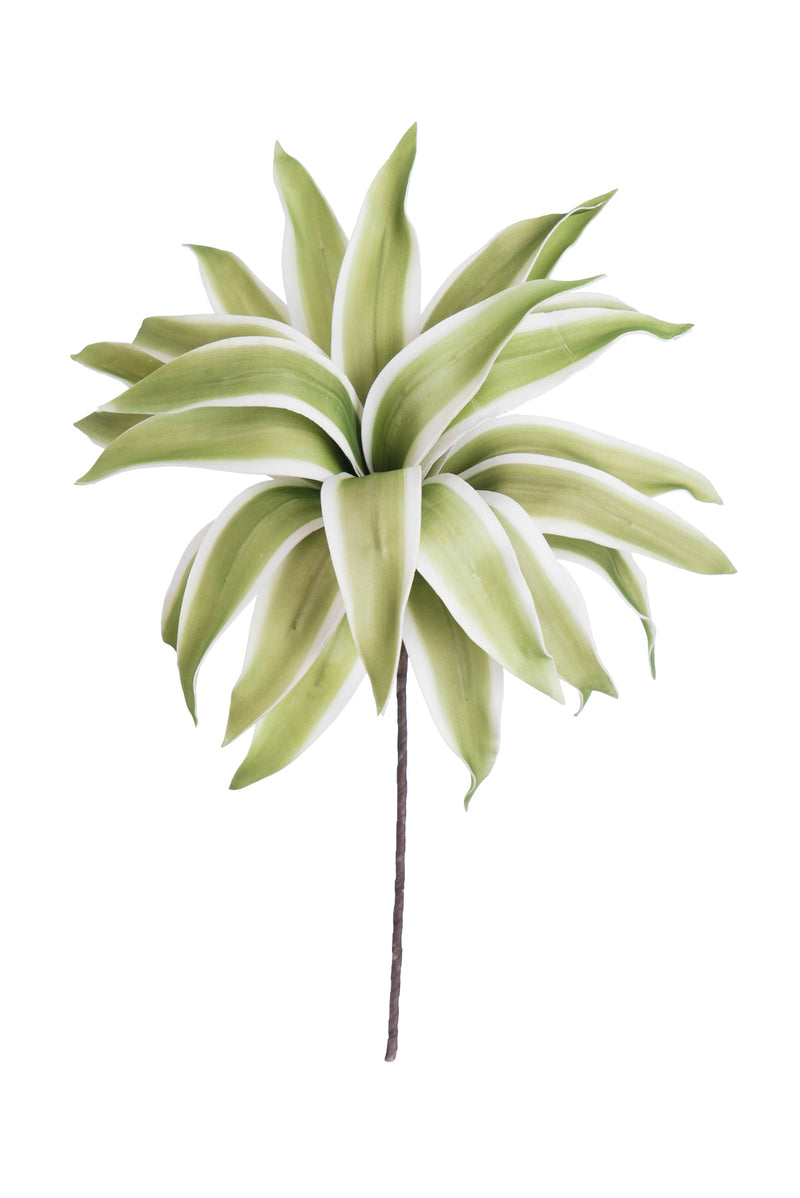 SPIKEY GREEN & WHITE STRIPPED FLORAL STEM