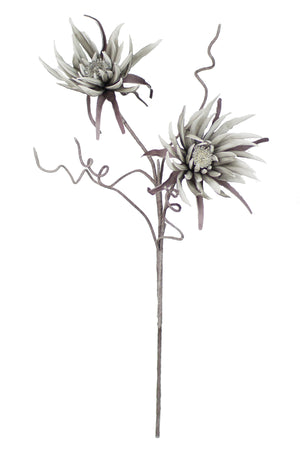 GREY TWO-HEADED FLORAL STEM