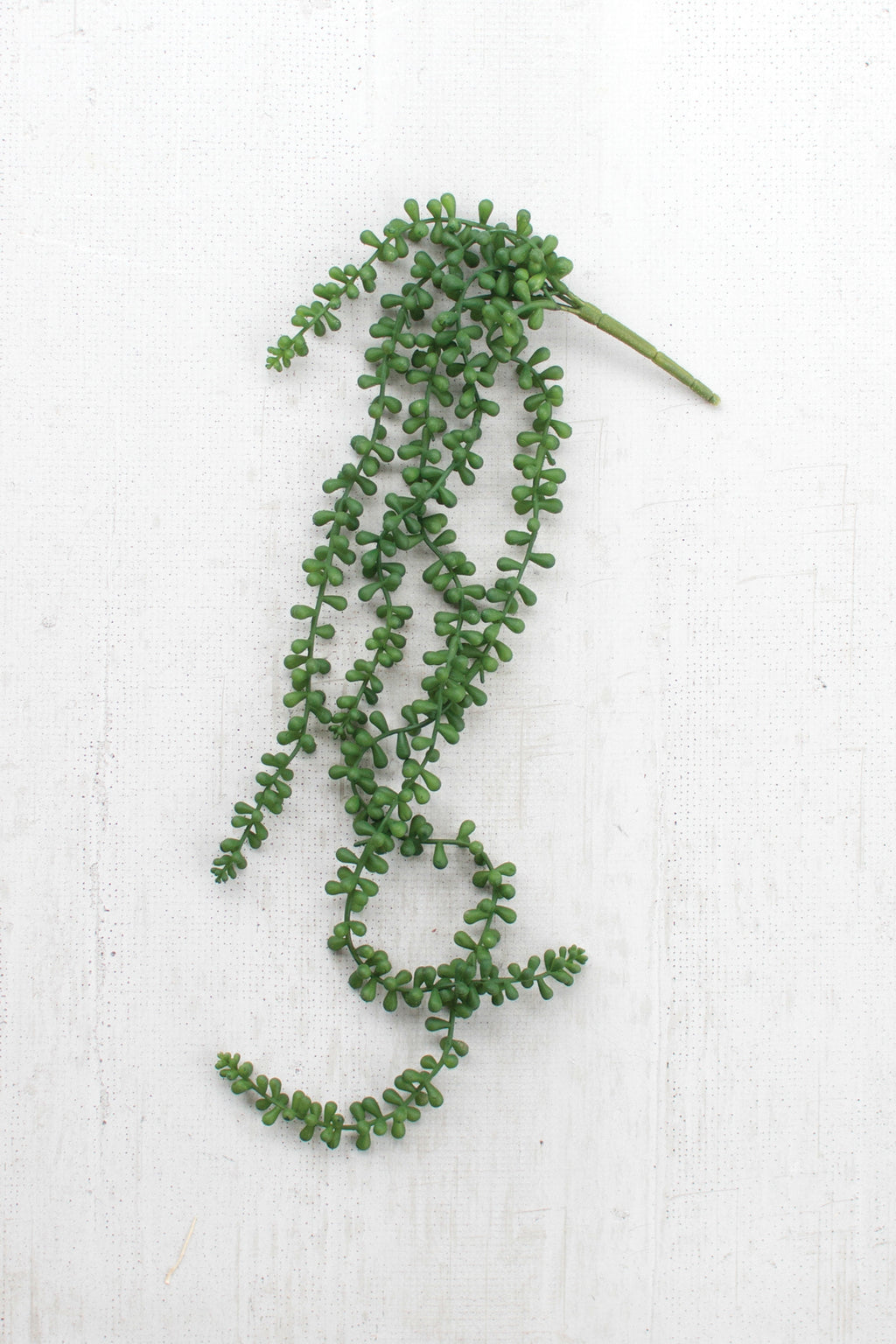 ARTIFICIAL NECKLACE FERN SUCCULENT