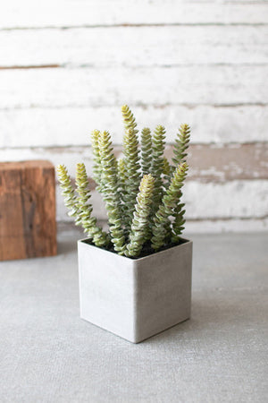 SQUARE POTTED ARTIFICIAL SUCCULENT