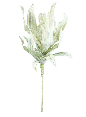 CORN HUSK GREENERY STEM