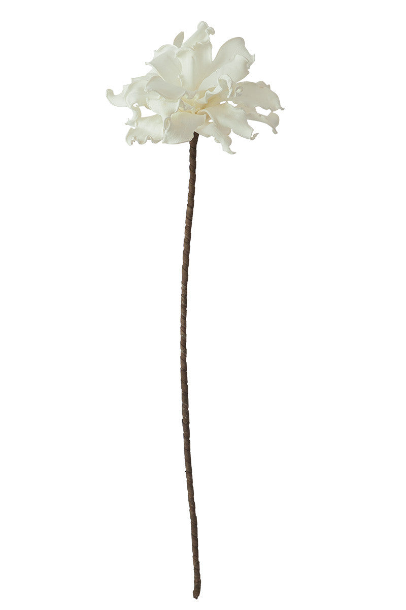 WHITE FLORAL WITH BROWN STEM