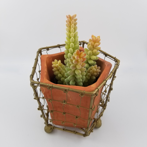 TERRACOTTA PLANTERS WITH WIRE WRAP AND BRASS DETAIL - D