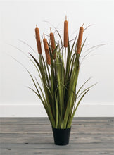 Load image into Gallery viewer, ARTIFICIAL POTTED CATTAILS
