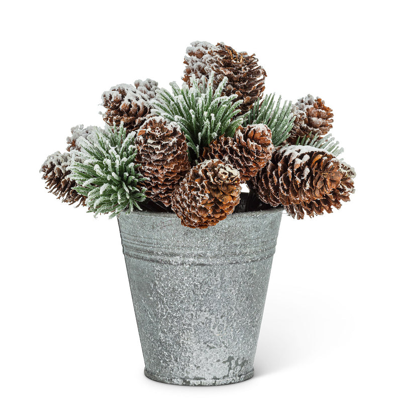 SNOWY PINECONES IN PAIL
