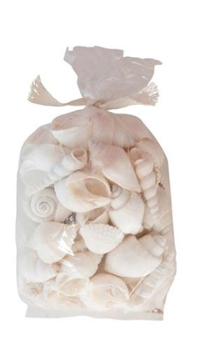 WHITE SHELLS IN A BAG