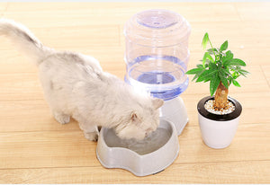 Pets Water and Food Set