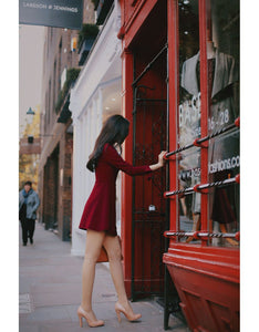 MIDNIGHT GARDEN WINE RED DRESS