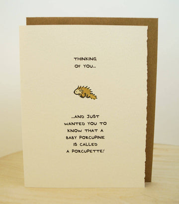 Thinking of you (porcupine) Card