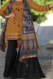 Brown Karandi 2 Piece Unstitched - ALP-487