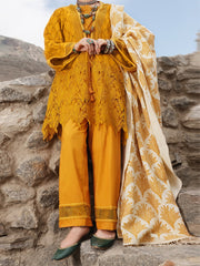Mustard Schiffli 3 Piece Stitched - AWP-3PS-217