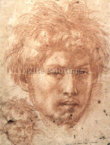 ANDREA DEL SARTO HEAD OF A YOUNG MAN ARTIST PAINTING REPRODUCTION HANDMADE OIL