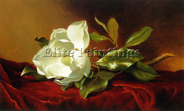 MARTIN JOHNSON HEADE A MAGNOLIA ON RED VELVET ATC ARTIST PAINTING REPRODUCTION